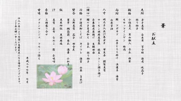 hana_07_2015